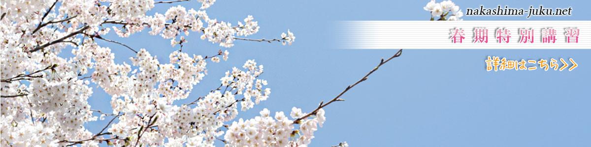 春期特別講習受付中